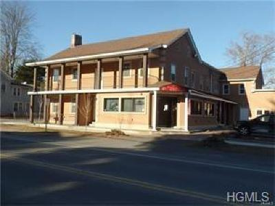 Sullivan County Commercial For Sale: 90 Sullivan Street