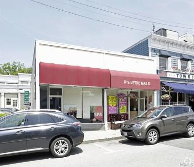 Rye Commercial For Sale: 11-13 Purdy Avenue