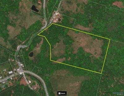 Sullivan County Residential Lots & Land For Sale: Wm. Brown Road