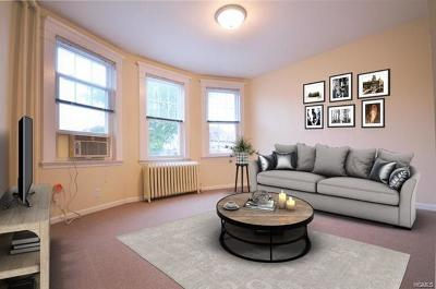 New Rochelle Rental For Rent: 37 Cleveland Avenue