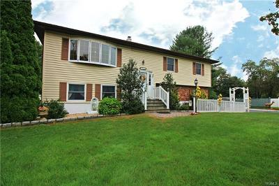 Yorktown Heights Single Family Home For Sale: 886 Salem Road