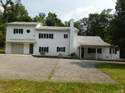 Newburgh Single Family Home For Sale: 23 Weyants Lane