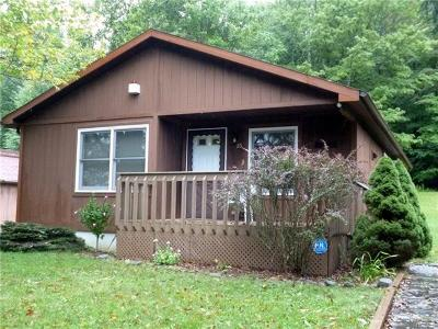South Fallsburg Single Family Home For Sale: 25 Timber Hill Lane