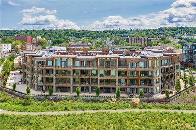 Condo/Townhouse For Sale: 45 Hudson View Way #209