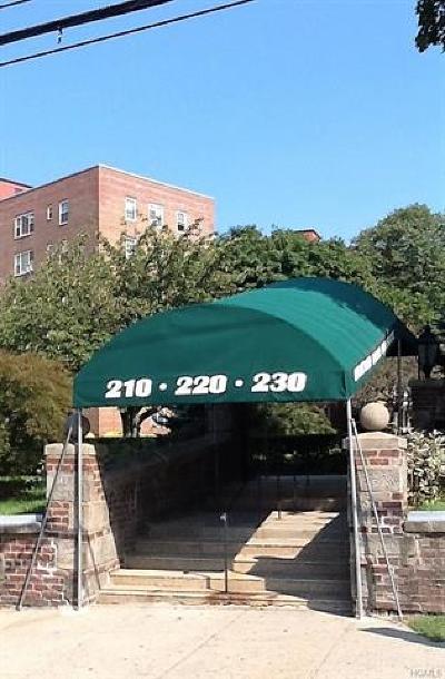 New Rochelle Rental For Rent: 230 Pelham Road #2L