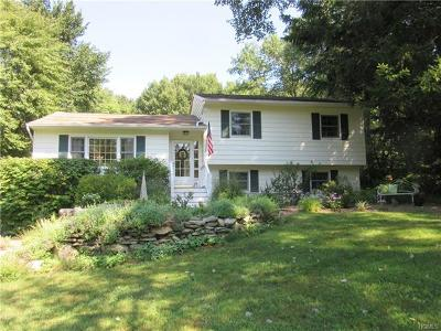 Stormville Single Family Home For Sale: 36 Ritter Road