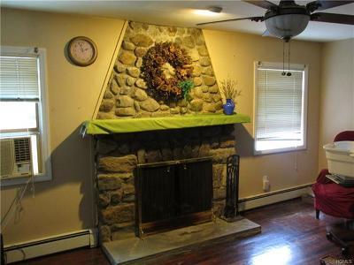 Putnam County Single Family Home For Sale: 11 Ridge Avenue