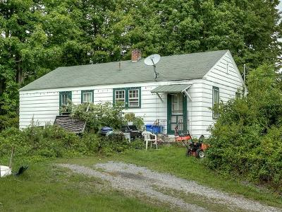 Single Family Home For Sale: 1403 State Route 302