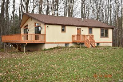 Ellenville Single Family Home For Sale: 1742 Old Greenfield Road