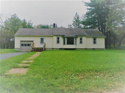 Livingston Manor NY Single Family Home For Sale: $135,000
