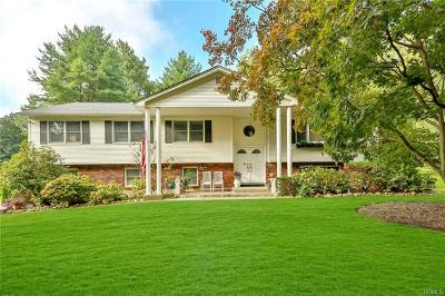 Pearl River Single Family Home For Sale: 107 Old Pascack Road