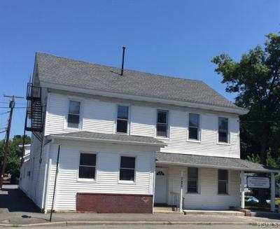 Dutchess County, Orange County, Sullivan County, Ulster County Rental For Rent: 15 Main Street #2