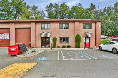 Rockland County Commercial For Sale: 343 Spook Rock Road