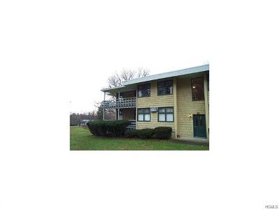 Orange County, Sullivan County, Ulster County Rental For Rent: 20 Locust Street #1D