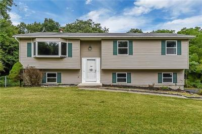 Wallkill Single Family Home For Sale: 43 Pressler Road