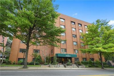 Westchester County Condo/Townhouse For Sale: 21 Lake Street #3G