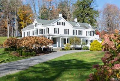 Dutchess County Single Family Home For Sale: 437 Route 308