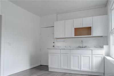 Orange County, Sullivan County, Ulster County Rental For Rent: 24 Edward Street #2
