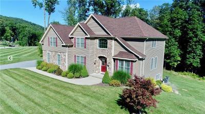 Highland Mills Single Family Home For Sale: 12 Montesi Drive