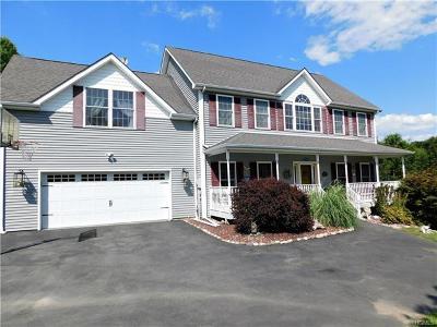 Pine Bush Single Family Home For Sale: 67 Paddock Drive
