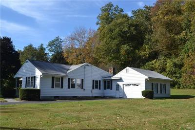 Wingdale Single Family Home For Sale: 103 Dog Tail Corners Road