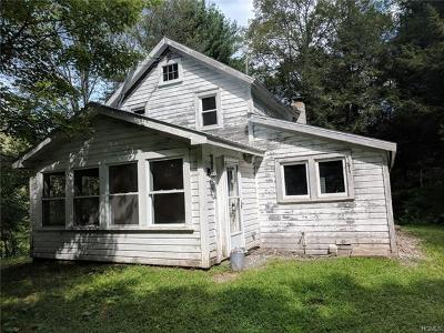 Livingston Manor, Roscoe Single Family Home For Sale: 563 Gulf Road