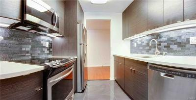 Scarsdale Rental For Rent: 555 Central Park Avenue #359