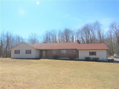 Middletown Single Family Home For Sale: 161 Pilgrim Corners Road