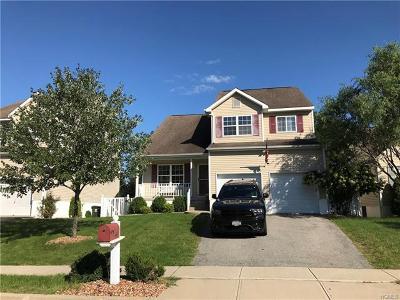 Washingtonville Single Family Home For Sale: 40 Alexander Drive