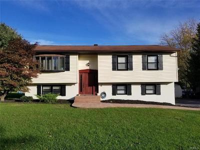 Washingtonville Single Family Home For Sale: 29 Hampshire Drive