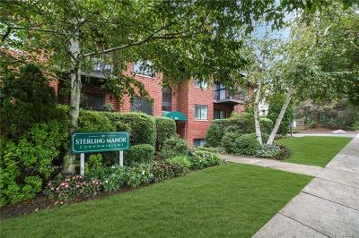 Westchester County Condo/Townhouse For Sale: 39 Sterling Avenue #3