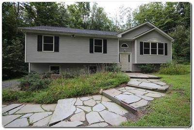Cornwall Single Family Home For Sale: 1 Roaring Brook Road