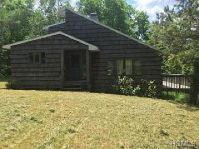 Delaware County Single Family Home For Sale: 1699 Burnwood Road