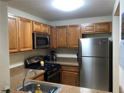 Orange County, Sullivan County, Ulster County Rental For Rent: 12 Lexington Hill #9