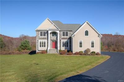Dutchess County Single Family Home For Sale: 25 Meadow View Court