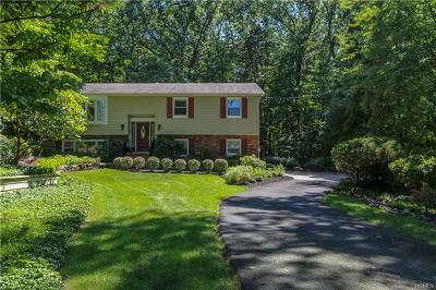 Tappan Single Family Home For Sale: 193 Washington Avenue