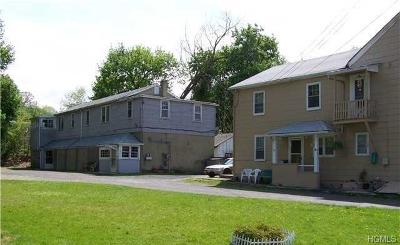 Newburgh Multi Family 5+ For Sale: 41 Ellis Avenue