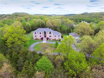 Pleasant Valley NY Single Family Home For Sale: $950,000