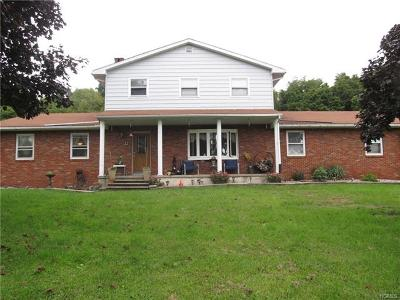 Port Jervis Single Family Home For Sale: 571 Mountain Road