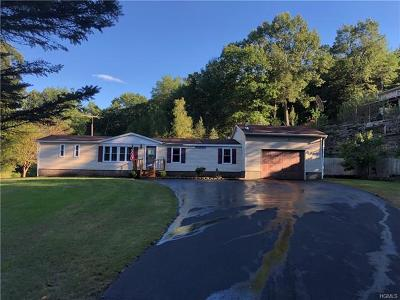 Ellenville Single Family Home For Sale: 774 Oak Ridge Road