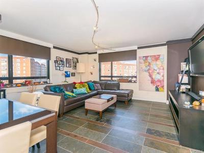 Bronx Condo/Townhouse For Sale: 2287 Johnson Avenue #17H
