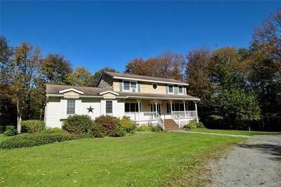 Livingston Manor Single Family Home For Sale: 701 Stump Pond Road