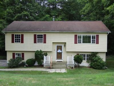 Salisbury Mills Single Family Home For Sale: 257 Lake Road