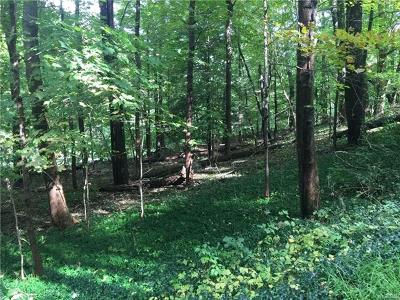 Stormville Residential Lots & Land For Sale: 320 Hosner Mountain Road