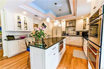 New City Single Family Home For Sale: 40 Hoover Lane
