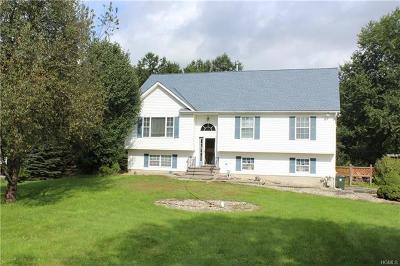 Washingtonville Single Family Home For Sale: 21 Horton Road