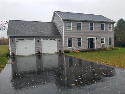 Pine Plains Single Family Home For Sale: 59 Stissing Avenue