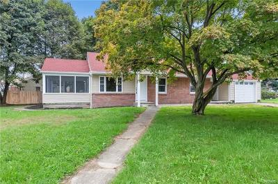 New Windsor Single Family Home For Sale: 1 Hobnail Court