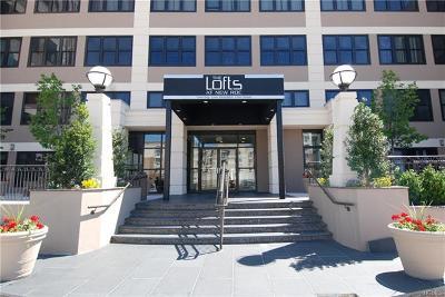 New Rochelle Co-Operative For Sale: 100 New Roc City Plaza #325