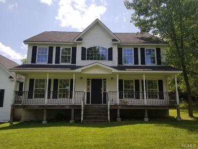 Westtown Single Family Home For Sale: 1761 County Route 1